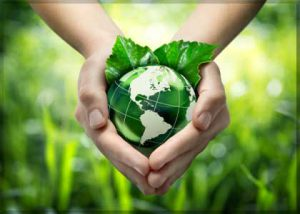 hands holding green earth to demonstrate Charity
